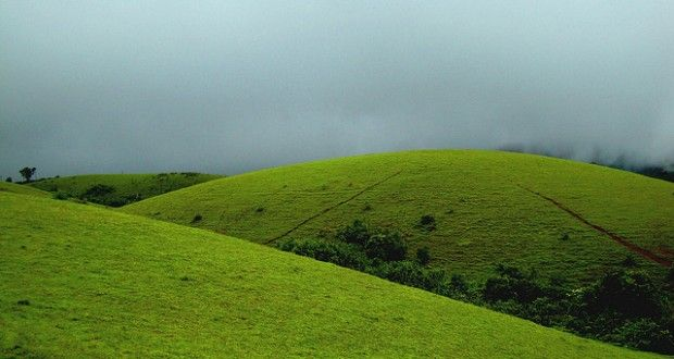 Green Meadows of Vagamon